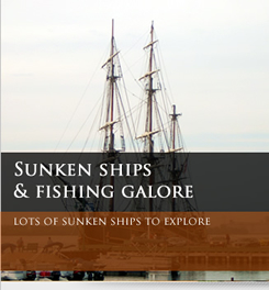 sunken ships and fishing image